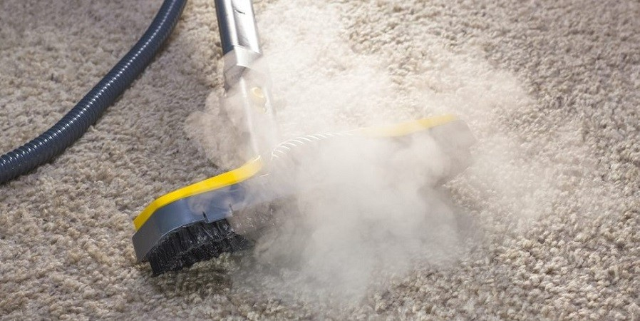 Does a Steamer Kill Bed Bugs?