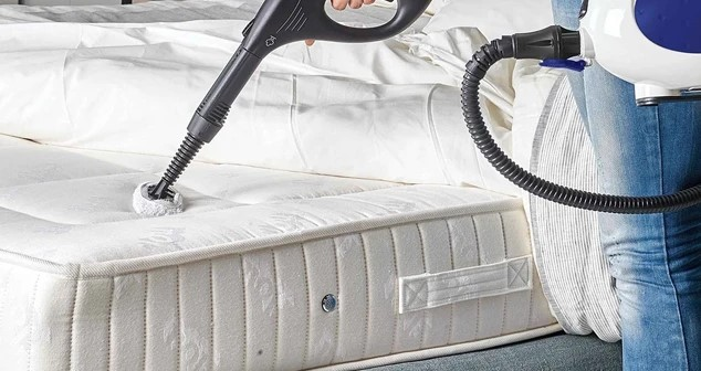 How to Use a Steamer to Kill Bed Bugs?